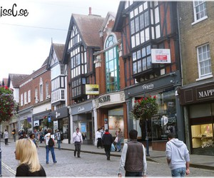 flowers, stores, and england image