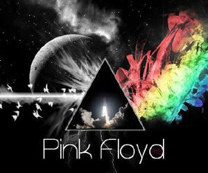 Pink Floyd and pink flos image