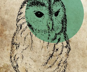 art, owl, and cute image