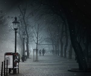 photography, night, and winter image