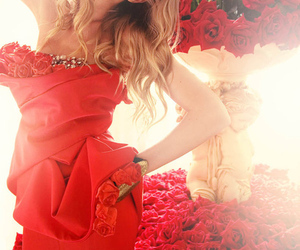red, rose, and model image