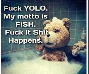 text and yolo image