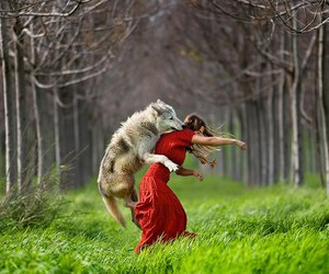 fairy tales and little red riding hood image