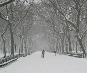 winter, snow, and park image