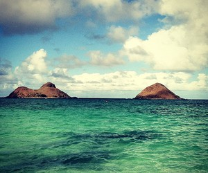 beach, beautiful, and hawaii image