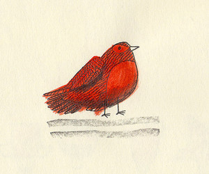 bird, december, and drawings image