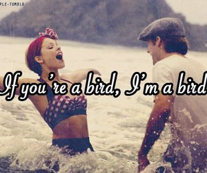 bird, quotes, and beach image