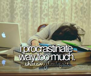 procrastinate and thatsmylittlefact image