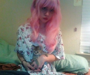 allison harvard, cat, and hair image