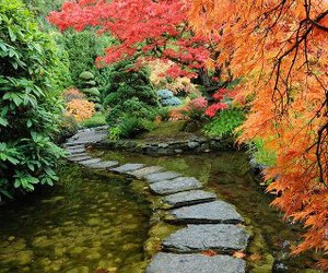 autumn, path, and rocks image