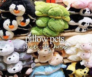 pillow, pet, and just girly things image