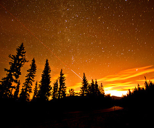 stars, nature, and photography image