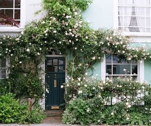 flowers, house, and door image