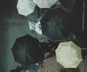 umbrella, rain, and people image