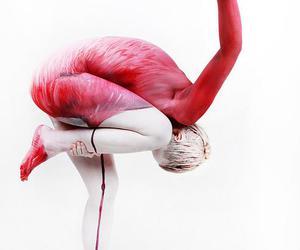 art, flamingo, and pink image