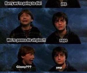harry potter, funny, and ginny image