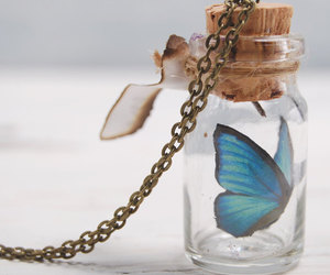 butterfly, chain, and cork image
