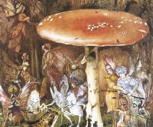 fairy, mushroom, and art image