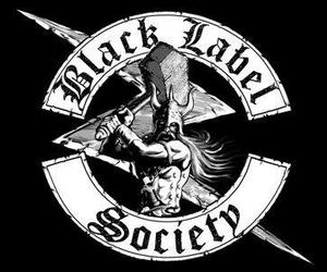 black and white, rock, and black label society image
