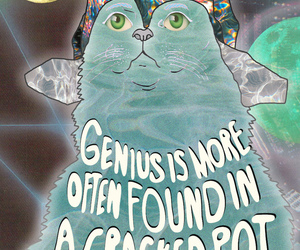 cat, illustration, and einstein image