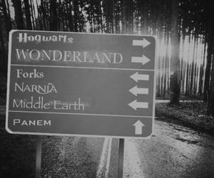 narnia, wonderland, and hogwarts image