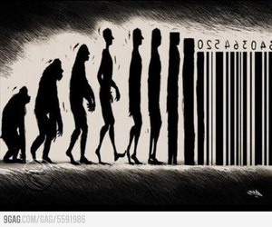 evolution, society, and human image