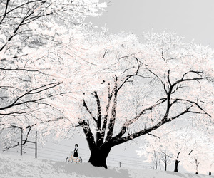 anime, tree, and white image