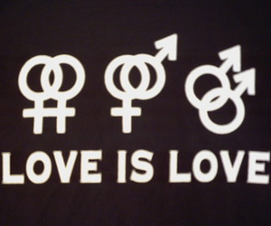 love, gay, and love is love image