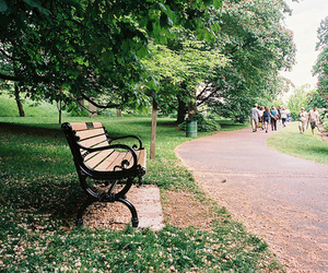 green, nature, and bench image