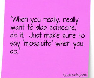 funny, quote, and mosquito image