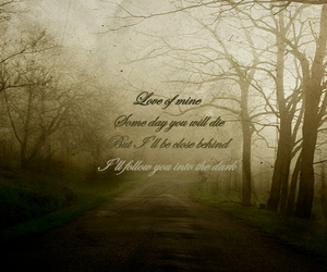 death cab for cutie, trees, and typography image