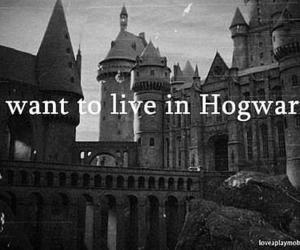 harry potter, hogwarts, and love image