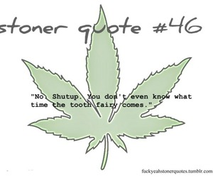 75 images about stoner quotes on We Heart It | See more ...