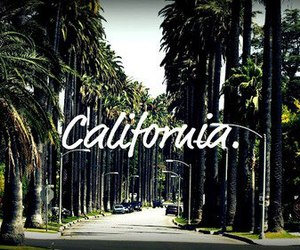 california and summer image
