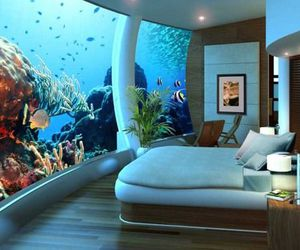 aquarium, pillows, and pretty image
