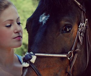 blonde, equestrian, and horse image