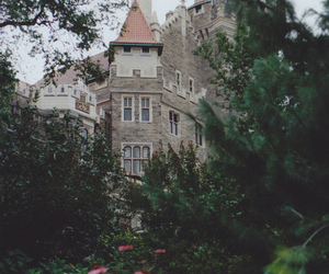 castle, flowers, and nature image