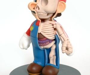 mario and anatomy image