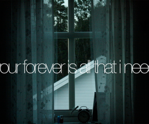forever, quote, and text image