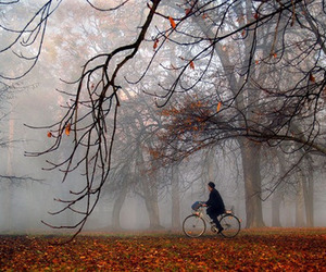 autumn and bicycle image