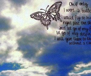 butterfly and sky image