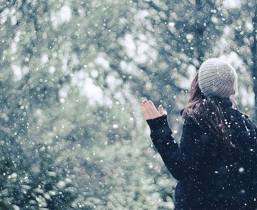 ფაქტები თოვლზე ❅ ❅ ❅