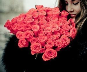تفسير شجرة الورد في الحلم   رؤيا شجرة الورد في المنام