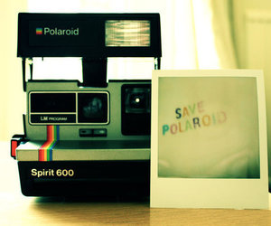 polaroid and photography image