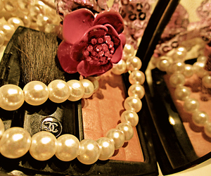 blush, chanel, and flower image