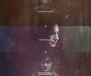 deathly hallows, the invisibility cloak, and the three brothers image