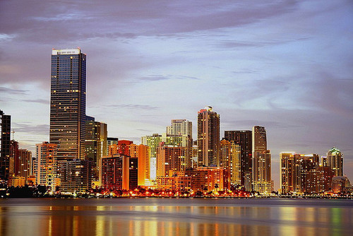 lights, Miami, and skylines image
