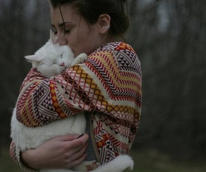 cat, hug, and friends image