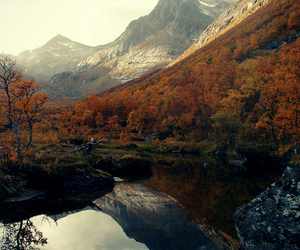 mountains, autumn, and landscape image