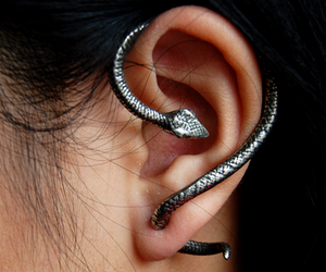 piercing and snake image